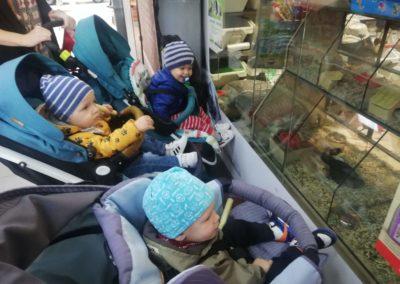 Nietypowy spacerek z odwiedzinami w zoologicznym :)